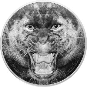 現貨 - 2016坦尚尼亞-稀有野生動物系列-黑豹-2盎司銀幣