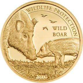 現貨 - 2018蒙古-野生動物保護系列-野豬-0.5克金幣