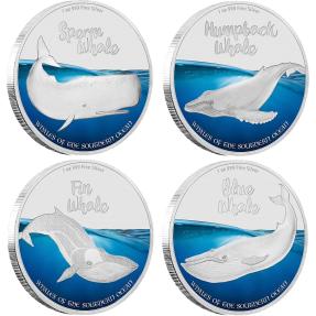 現貨 - 2016皮特肯-南洋鯨魚系列-四枚組